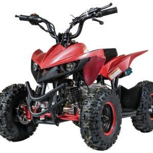 VITACCI-MINI-RACER-60CC-2__45835.1570772190